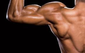Exercitii prioritare pentru masa musculara